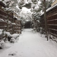 冬の弘道館