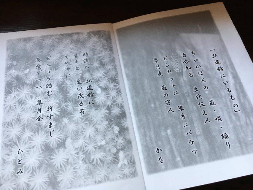 20170520_カラスマ大草引き1